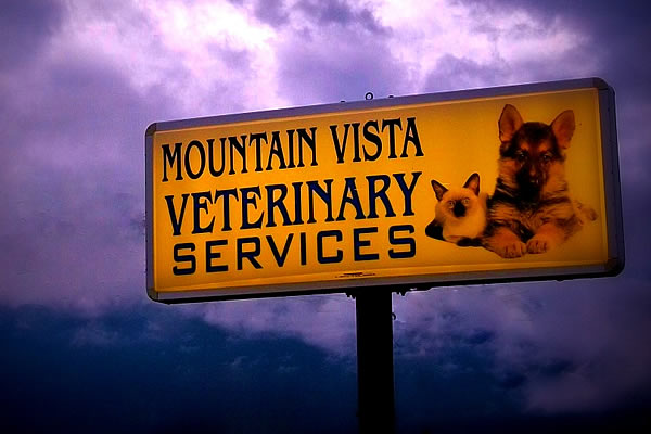 Exterior sign for Mountain Vista Veterinary Services