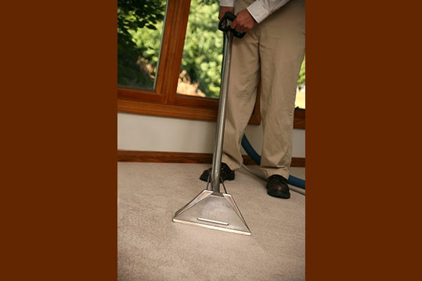 Person steam cleaning carpet