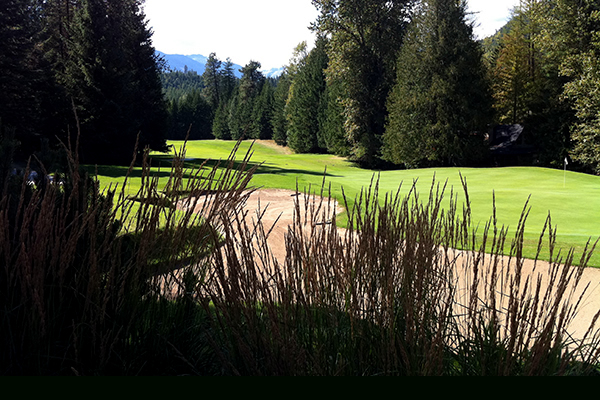 Outside picture of a golf course