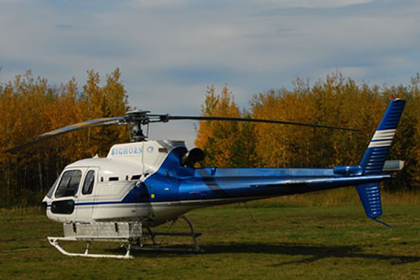 White and blue helicopter landed on grass
