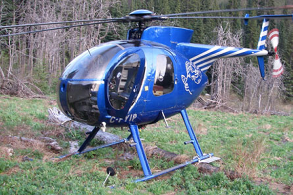 Blue helicopter landed on grass